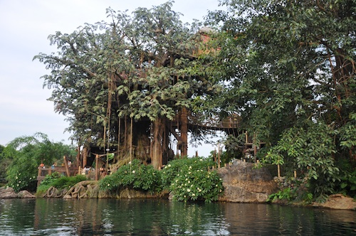 tree house disneyland